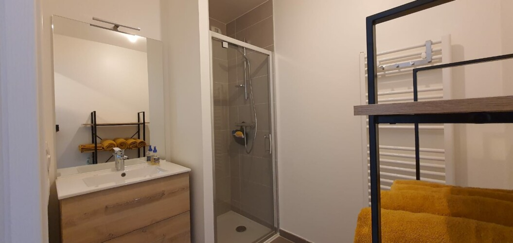 salle de bain T2 le petit marquisat a Annecy