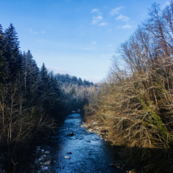 rivière du fier