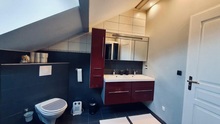salle de bain wc maison sevrier