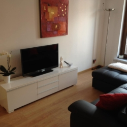 TV appartement rue carnot annecy